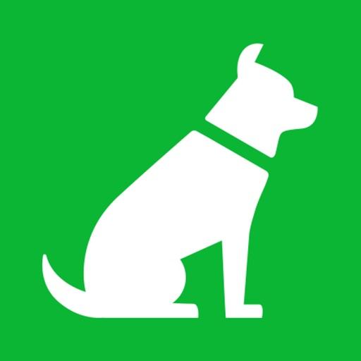 FiDoo: Dog Doo Health Tracking