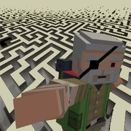 Struggle Maze