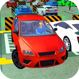 Multi Lever Parking Market
