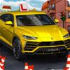 NGUYEN THI LIEN - Car Driving Test Skill artwork