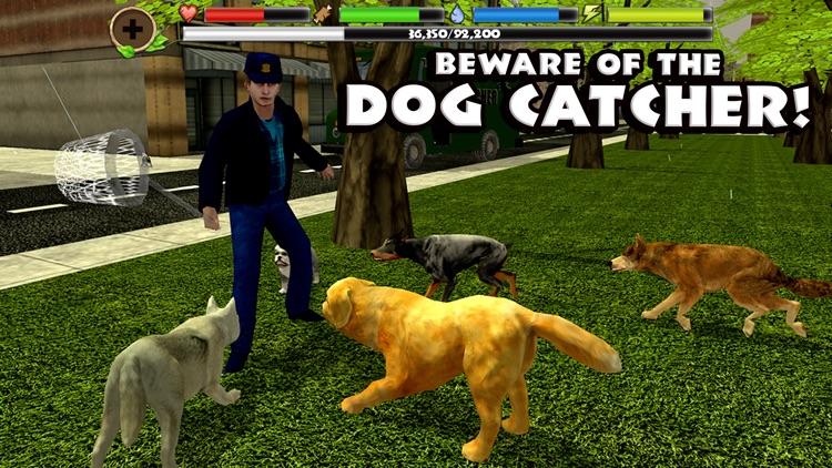 Stray Dog Simulator screenshot-4