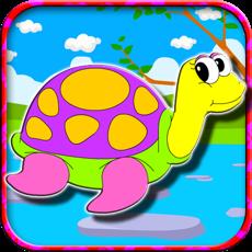 Activities of Coloring Happy Turtles