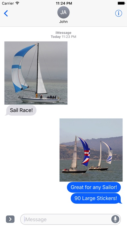 Sail Race screenshot-0