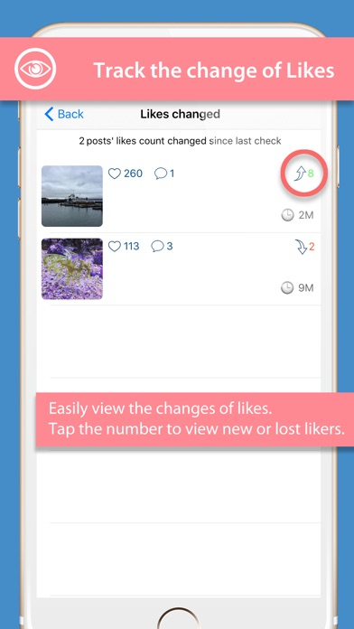 InsView - Pro Followers Report Screenshot