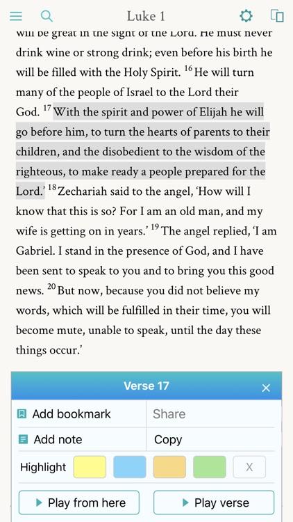 NRSV: Audio Bible for Everyone screenshot-3