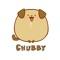 Chubby the Dog