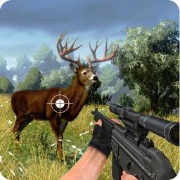 Wild Animal Sniper Shoot