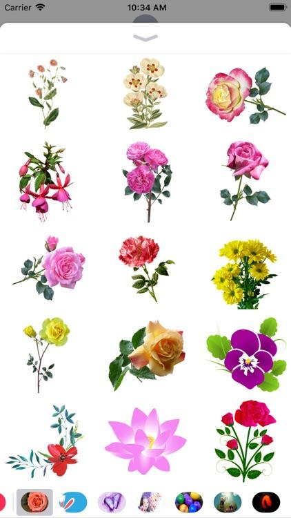 Flower Stickers - 2018