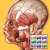 Atlante di Anatomia-Sezioni