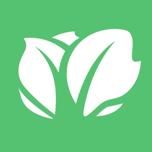 Small Business Loans - Kabbage