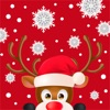 点击获取Wonderland Christmas Winter