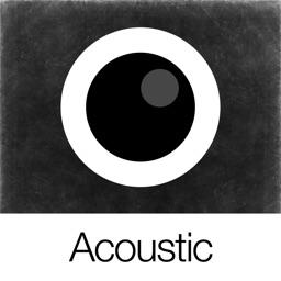 Analog Acoustic