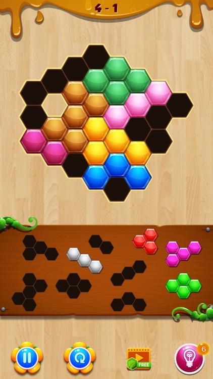 Wood Hexa Block Puzzle