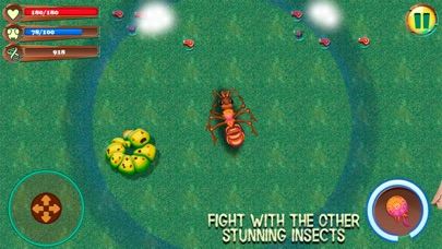 Ant City Colony Evolution screenshot two