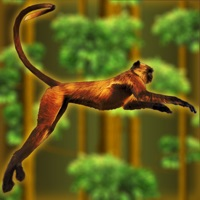 Codes for Ape, Chimp and Monkey Banana Quest Fun in the Forest - Free Edition Hack