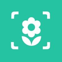 plant identifier