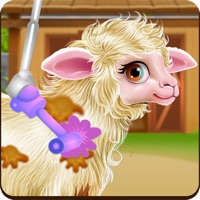 Baby Sheep Care