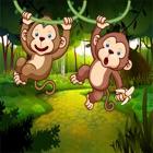 Find the Monkey – Monkey Game icon