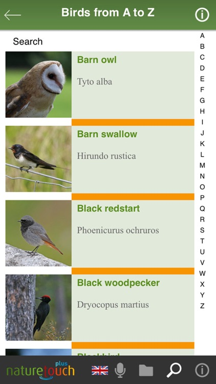 Identify live bird songs screenshot-6
