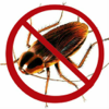 Ultrasound Cockroach Repellent
