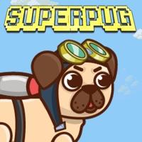 Codes for SuperPug Hack