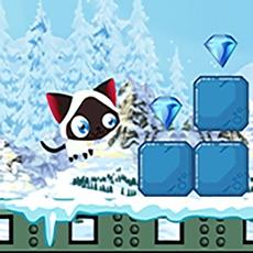 Activities of Snowy Fun