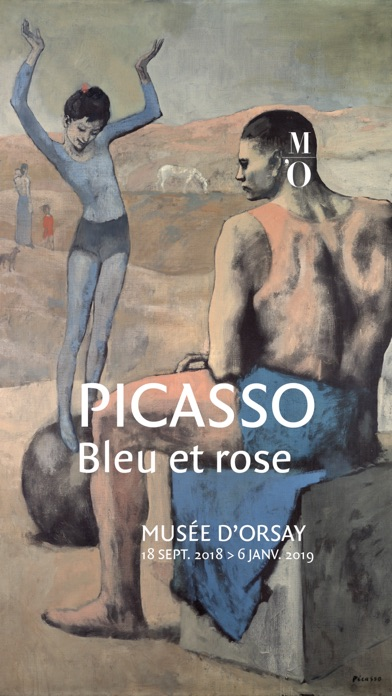 download Picasso. Bleu et Rose apps 2