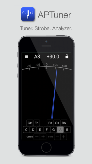 APTuner: Tuner + Strobe Screenshot