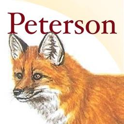 Peterson Mammals Field Guide