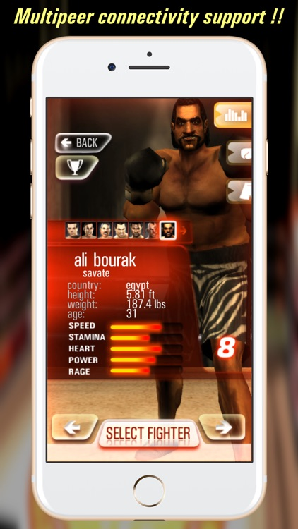 Iron Fist Boxing Lite screenshot-4