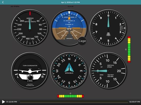 iPad Image of WingBug