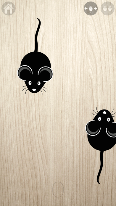 Game for cats! Screenshot 3