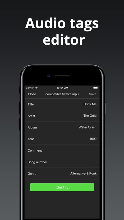 Evermusic: offline music & EQ screenshot-4
