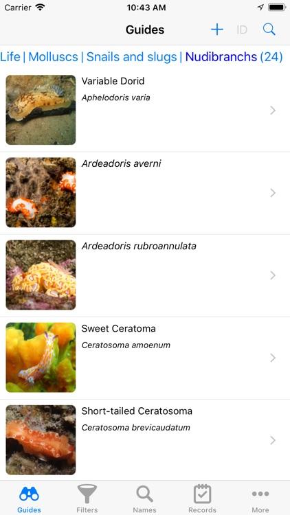 Sydney Marine Life screenshot-8