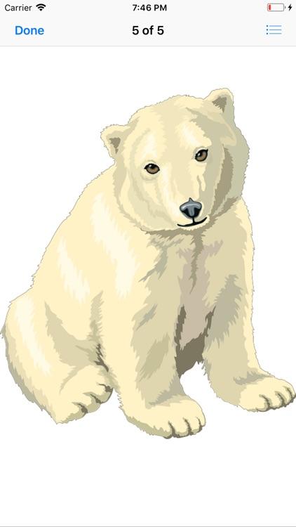 Bear Stickers screenshot-6