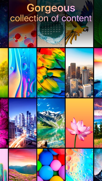Download Live Wallpapers Now for Pc