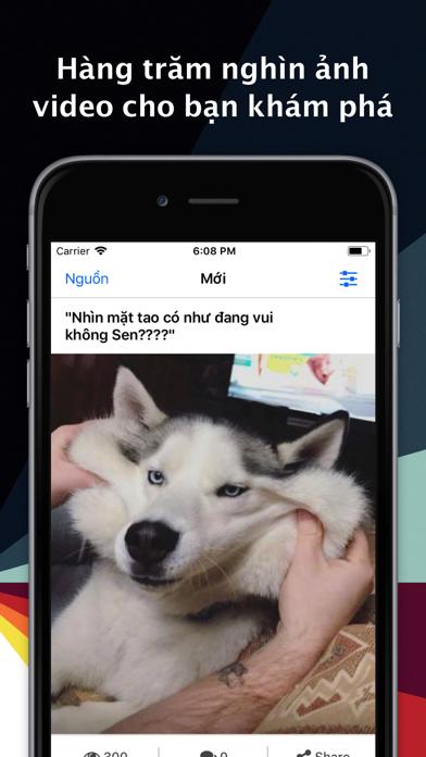 Hài VL screenshot one