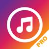 Musica Pro para sin internet