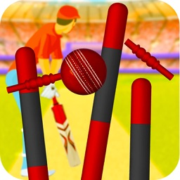 Stick Cricket Premier League Game