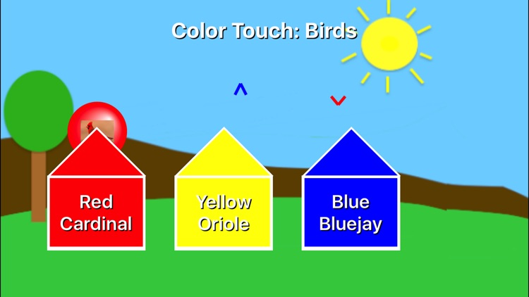 Color Touch: Birds