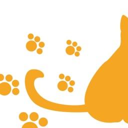近所の ネコや ノラネコを共有するアプリ『ねこ さがし』