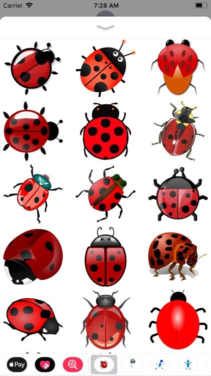 My Ladybug Sticker Pack