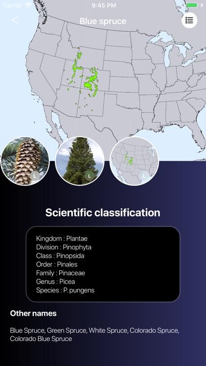 Conifers screenshot-7