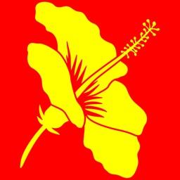 Libraries Hawaii