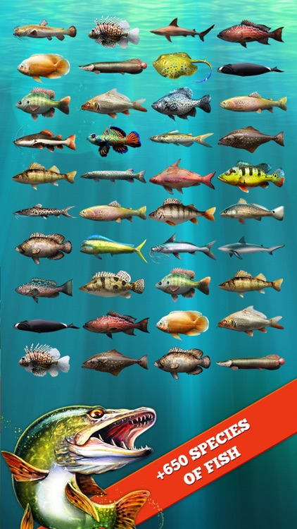 Let's Fish:Sport Fishing Games