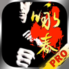咏春拳速成—视频教程