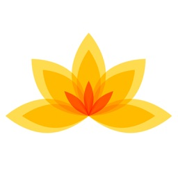 Yoga - Meditation and Workout