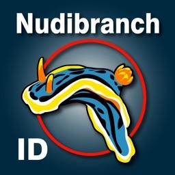 Nudibranch ID Eastern Pacific