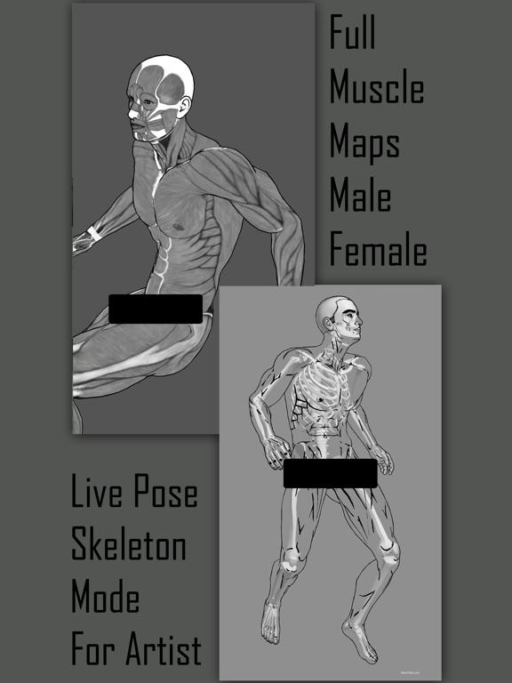 Art Model 3d Pose Tool Apk Free Download