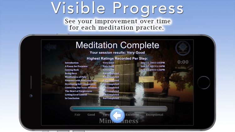 Mindfulness Meditation with Tara Brach, Phd. screenshot-4